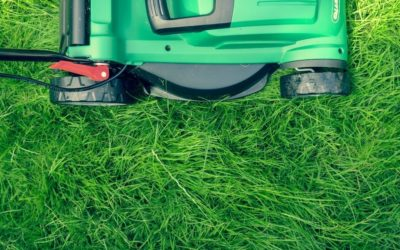 Does God Care About My Lawn?